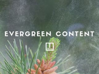 How to keep your evergreen content evergreen